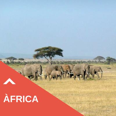Descobreix Àfrica amb Panda Viatges