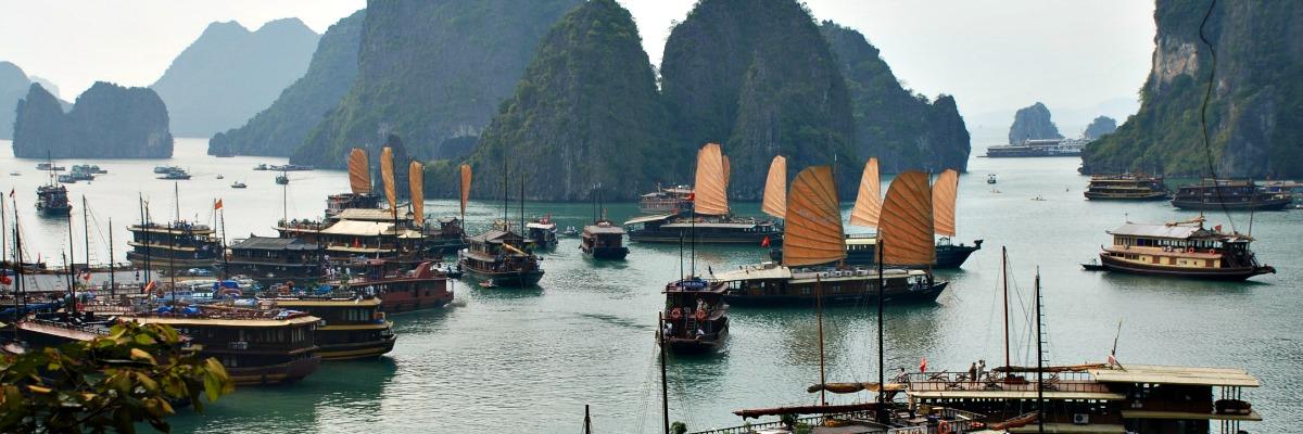 Un viatge al Vietmnam pot ser un viatge alternatiu de Panda